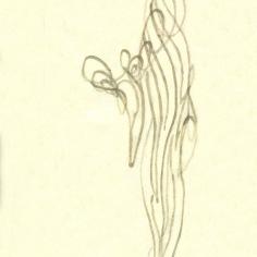 zoom-m-a-012a-donne-par-s-2011-aout